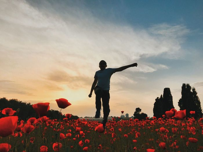 Low angle view of boy walking at poppy flower field against sky