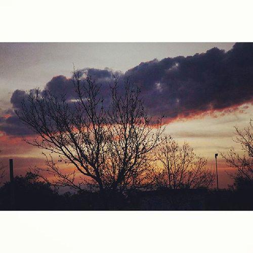 Universidad Sky