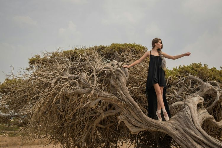 Cyprus Paphos Pegeia Beutiful Nature Ballerina Lonely Tree Photography Autumn 2015
