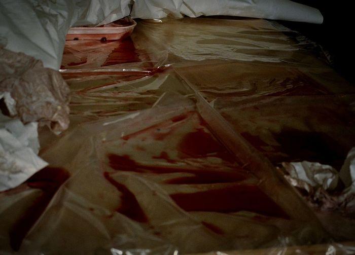 carnage. Blood Horror Horror Photography Darkart Dark Art Horrors Gore Gorey Bleed Creepy