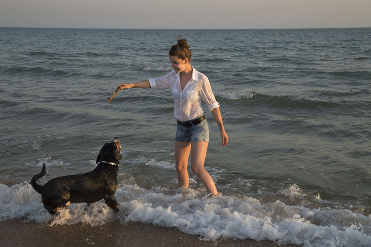 Beautiful young woman playing with her dog on the sea beach during sunset. Active; Animal; Beach; Coast; Colorful; Colour; Cute; Dog; Enjoy; Female; Freedom; Friend; Friendship; Fun; Funny; Girl; Happiness; Happy; Human; Joy; Leisure; Lifestyle; Nature; Sea; Ocean; Outdoor; Outdoors; People; Person; Pet; Play; Playful; Playing;  Animal Animal Themes Beach Canine Dog Domestic Domestic Animals Horizon Horizon Over Water Land Mammal Motion One Animal One Person Pet Owner Pets Real People Sea Standing Water