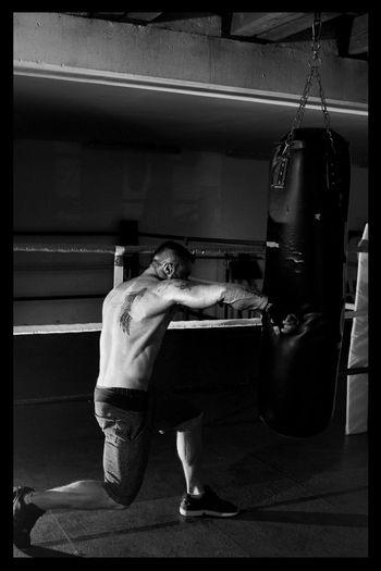 Boxing - Sport