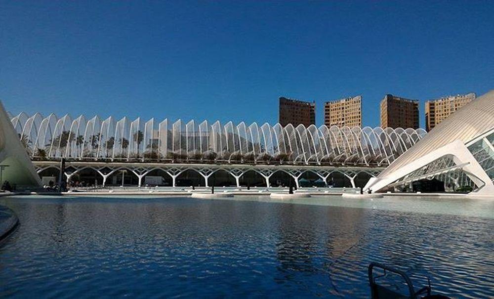 Ciudad de las artes y la ciencias Day3 València España SPAIN Ciudaddelasartesylasciencias