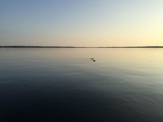 Peaceful sailing Nature Be. Ready. Waterfront Clear Sky No People Horizon Over Water Idyllic