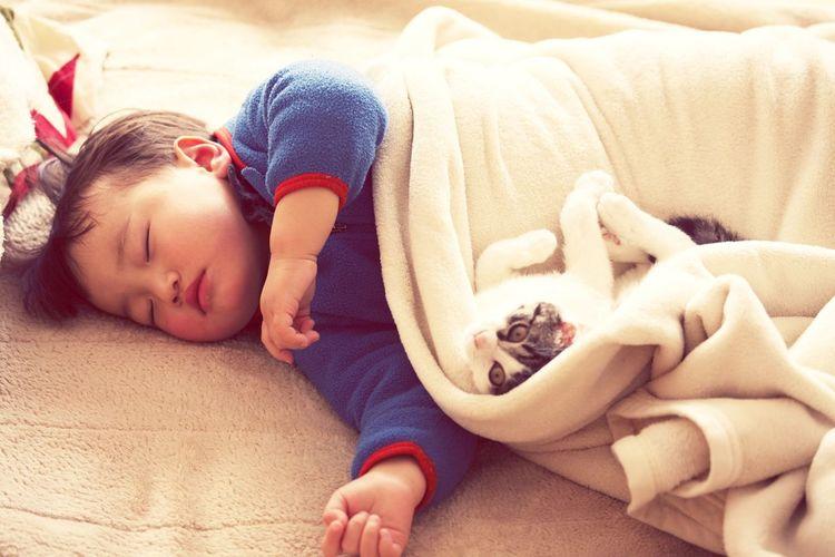 Boy Sleeping With Cat