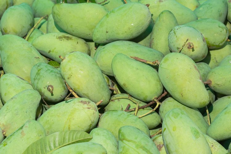 Raw mango Backgrounds Close-up Day Food Food And Drink For Sale Freshness Full Frame Green Color Healthy Eating Large Group Of Objects Market Market Stall No People Outdoors Retail