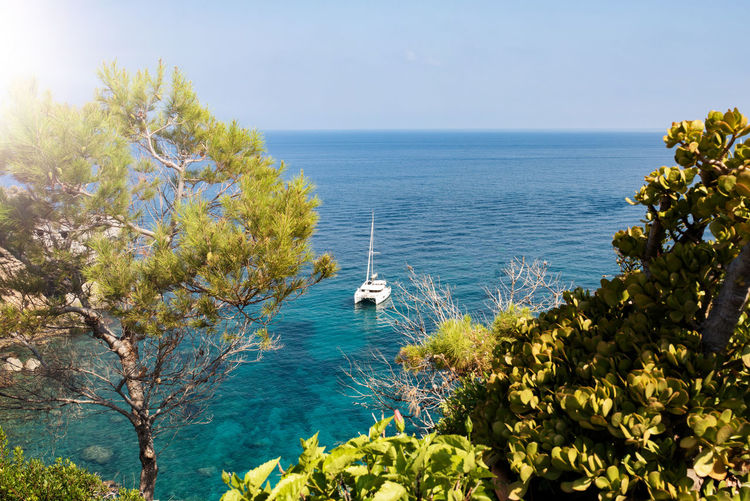 Majorca Mediterranean Sea Balearic Islands Beauty In Nature Day High Angle View Horizon Horizon Over Water Idyllic Land Nature No People Outdoors Plant Sailboat Scenics - Nature Sea Sky Summer Sunlight Tranquil Scene Tranquility Tree Water