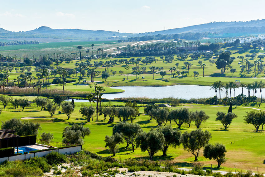 Typical golf club in Spain Field Game Golf Golf Club Golf Field Green Field Lake Landscape Lush Foliage Meadow Mountain Nature Nobody Outdoor Games Palm Trees Pond Pool Scenery SPAIN Tropical Climate Water