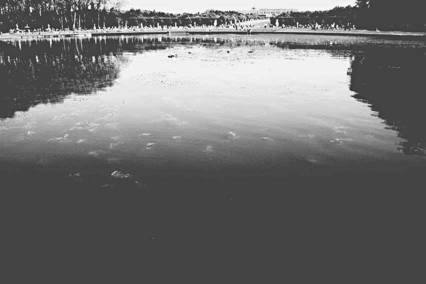Open Edit Negative Space Versailles Paris Blackandwhite Relaxing Sightseeing Beautiful Exploring Enjoying The View