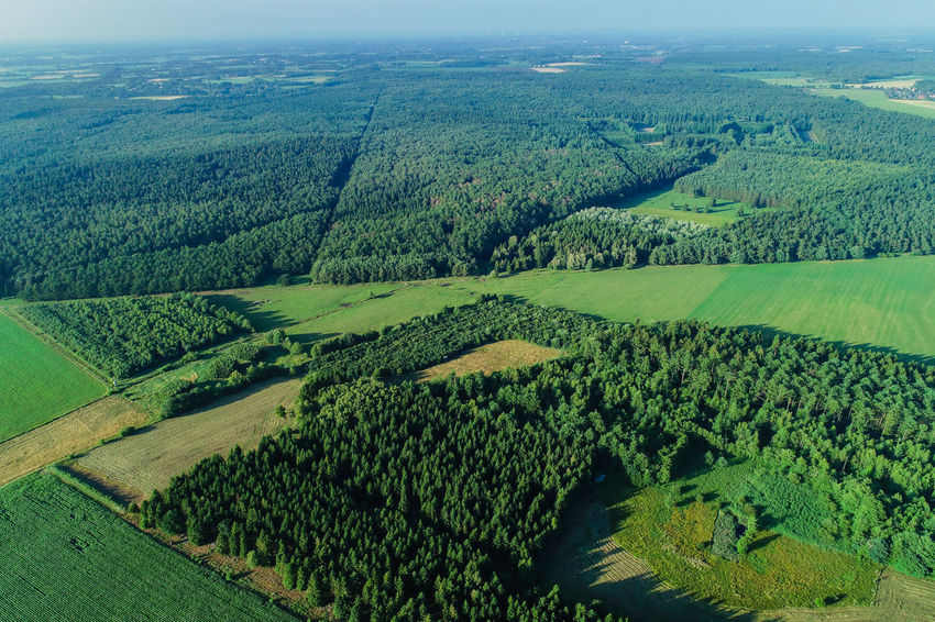 Mmmmmh ich liebe Mars, Snickers, Nuts etc… Agriculture Booking Forest Drones Field Nature Tree Wood Aerial View Branch Cereal Field Cereals Fir Flight Forest Landscape Grain Landscape Meadow Mixed Forest