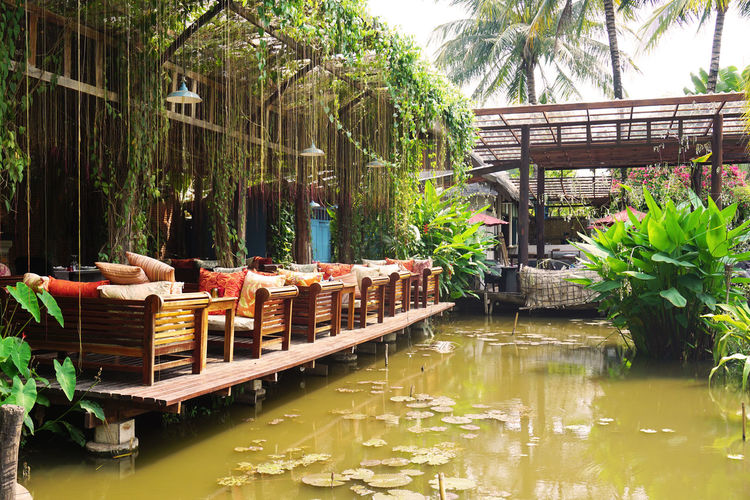 2017 Architecture ASIA Beauty In Nature Cafe Day Laos Lotus Luang Phabang Luang Prabang Luxury Manda De Laos Nature Outdoors Outside Pond Resort Restaurant Summer Tree Tree Water