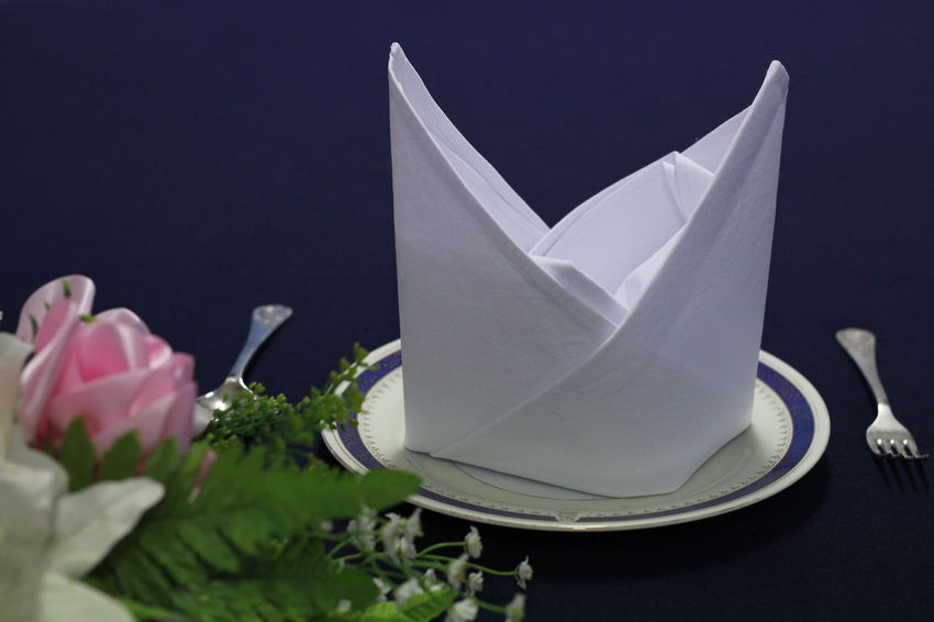 Napkin Folding NapkinFolding Napkins Art And Craft Black Background Close-up Craft Creativity Flower Flower Head Flowering Plant Fragility Freshness Hotel Service Indoors  Napkin Nature Origami Paper Paper Boat Petal Plant Restaurant Still Life Vulnerability