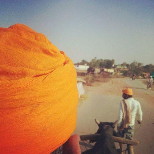 Jattonbullcart Punjabmemories