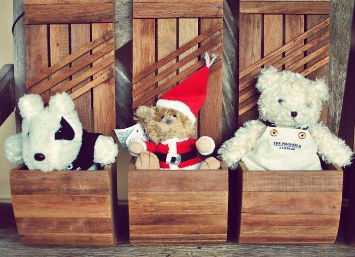 Teddy Bear Teddy Bear :) Teddy Bear 🐻 EyeEm Selects Eyeemview EyeEm Gallery EyeEm Eyeem Market Teddy Bear Teddy Bears Teddy Bear ! Teddy Bear♡ Panda - Animal Stuffed Toy Teddy Bear Wood - Material Stuffed Bear Toy Childhood Close-up
