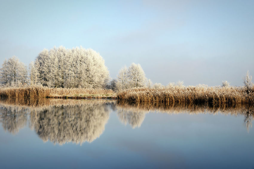 rime frost landscape at Havel river (Brandenburg - Germany). Morning hours. Beauty In Nature Frost Frosty Frosty Morning Frosty Mornings Havel Havel River Havelland Havelland Germany Nature No People Outdoors Reflection Reflections In The Water River Riverscape Riverside Sky Tree Water Winter Winter Wonderland Wintertime