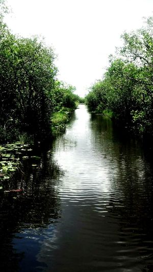 Nature On Your Doorstep Boat Ride Airboat Coulor Of Life