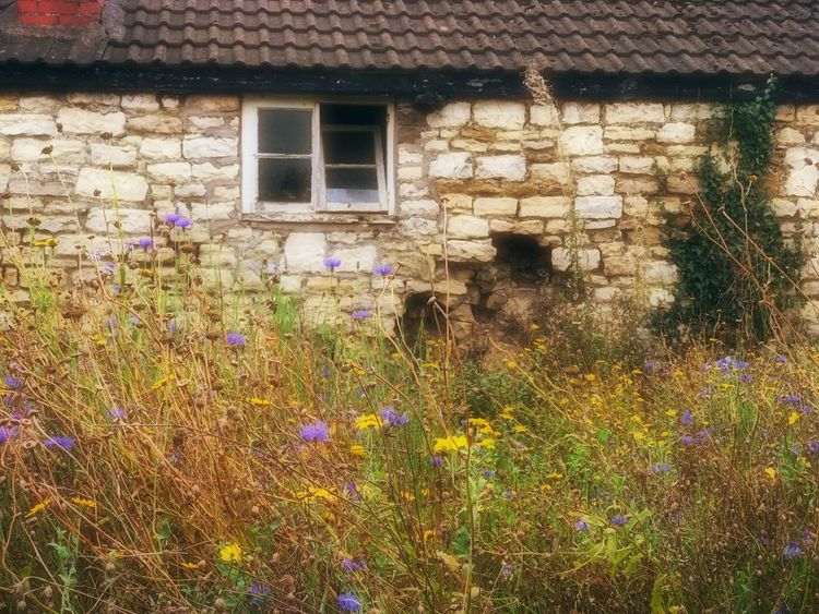 Stone Stone Wall Stone Buildings Cottage Grass Wild Flowers Wild Flower Country Countryside Country Living Country Life Stone Cottage House Building Exterior Architecture No People Outdoors Flowers Nature Built Structure Stone Walls