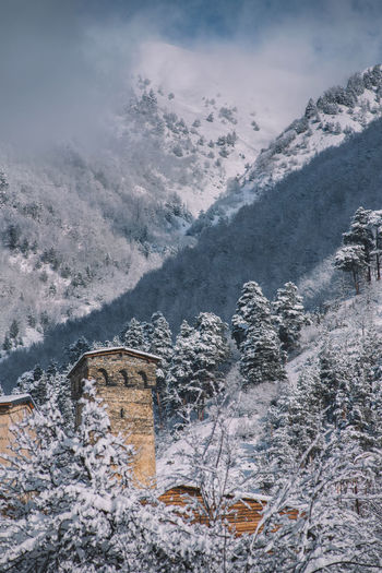 Cold Temperature Winter Snow Mountain Beauty In Nature Nature Scenics - Nature No People Cloud - Sky Day Architecture Outdoors Plant Frozen Tranquility Tree Built Structure Environment Snowcapped Mountain Mestia Old Vilage Old Town Snow Mountain Skill  Castle