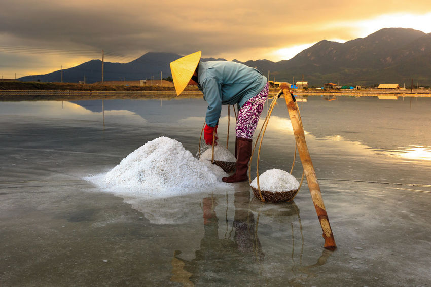 Woman is working on salt field at dawn. Salt field Hon Khoi in Nha Trang, Viet Nam. Workers transporting salt from the fields Hon Khoi, Viet Nam. Agriculture Asian  Bamboo Frame Conical Hat Dawn Evaporation Farmer Field Harvest Honkhoi Hugging A Tree Industrial Minerals Natural Reflection Salt Sea Sky Stack Summer Sunset Traditional Vietnam Woman Working