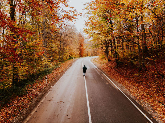 Rear view of man riding motorcycle on road during autumn