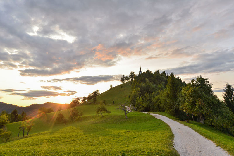 Just near my home in Ljubljana, there is a perfect hill to cool yourself in hot summer evenings. It's calle Sveti Jakob (Sanit Jacob in english) and pictures of that hill with church you have probably see in past. Very nice. Church Saint Jacob Summer Exploratorium Summertime Sunlight Sunset_collection Sveti Jakob The Great Outdoors - 2018 EyeEm Awards The Traveler - 2018 EyeEm Awards Activity Beauty In Nature Church Architecture Cloud - Sky Environment Eveneings Field Grass Green Color Idyllic Land Landscape Nature Non-urban Scene Outdoors Plant Religion Religious  Religious Architecture Scenics - Nature Sky Sport Summer Sun Sunset Tranquil Scene Tranquility Tree