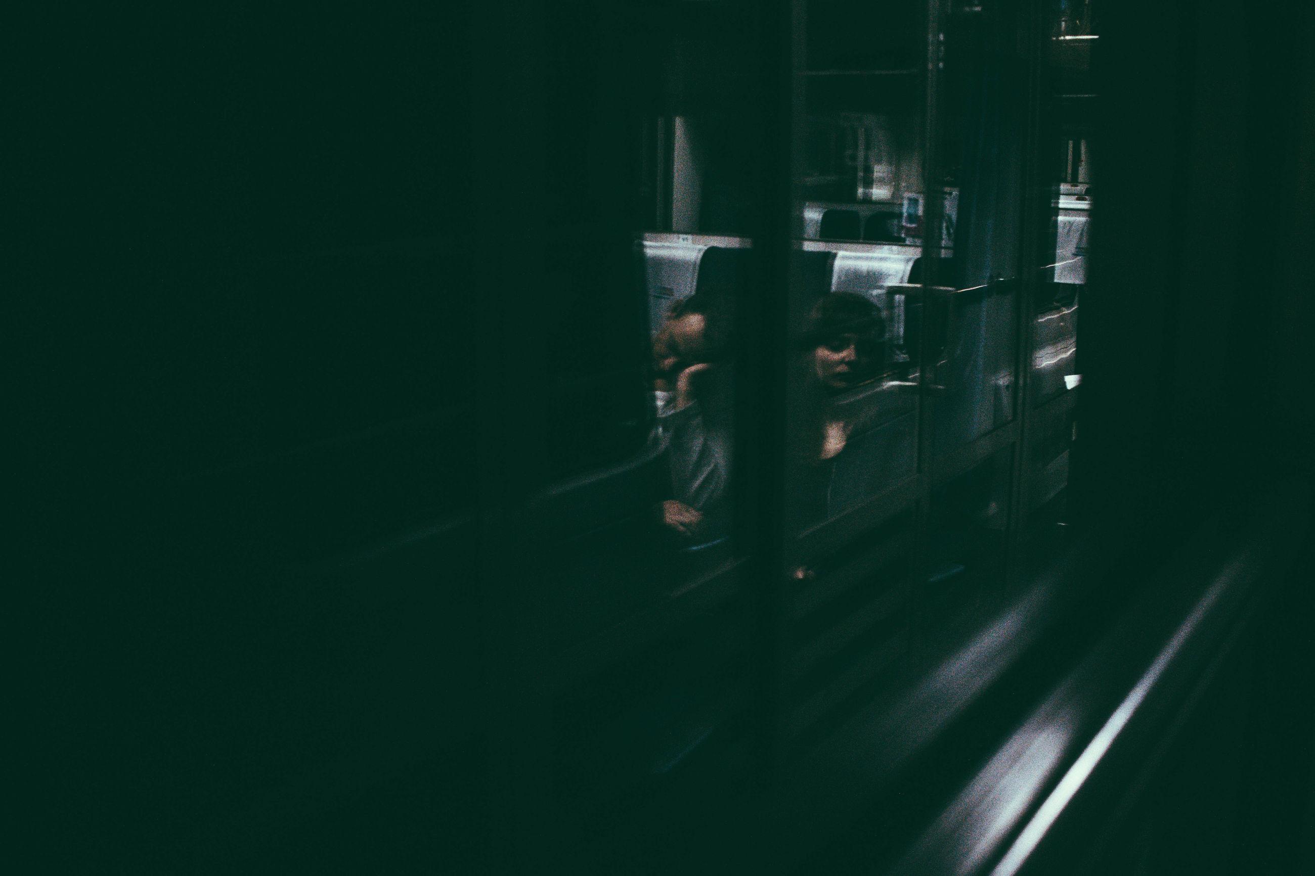 night, dark, illuminated, no people, plant, growth, nature, close-up, vignette