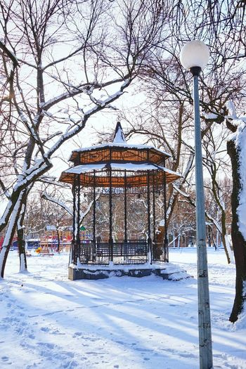 Winter Wintertime Snow Snowing Park Frozen Scenics - Nature Cold Temperature Covering Beauty In Nature Sunlight Sunlight And Shadow Bare Tree Building Exterior Travel Destinations Narnia  Gazebo Gazebo At The Park Streetlight Architecture White Color Wood Outdoors Calm Calmness Garden Snow Covered Deep Snow Pavilion Powder Snow