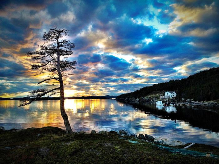 Sea Side - Newfoundland Canada Landscape Landscape_Collection Sunset Clouds Sea Clouds And Sky Nature Trees EyeEm Best Shots Colors Nature_collection AMPt_community Water Seaside Sun Summer Canada Peace Landscape_photography Beautiful Reflection Water Reflections Showcase: November The Great Outdoors With Adobe My Favorite Place