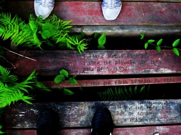 Feet High Angle View Keane Leaf Path Plant Somewhere Only We Know Wood Wooden