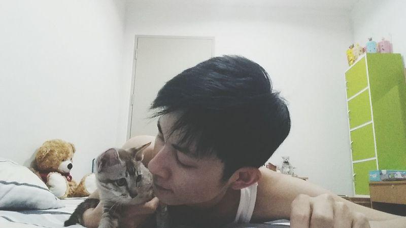 ฟัดหน่อยๆ Cat Lovers Cat Cat ♡ Cat Cute