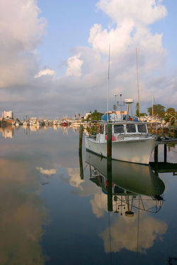 Boat Cloud Harbour Madeira Beach Florida Mode Of Transport Nautical Vessel Outdoors Reflection Saint Petersburg Florida Scenics Sky Standing Water Tranquil Scene Water