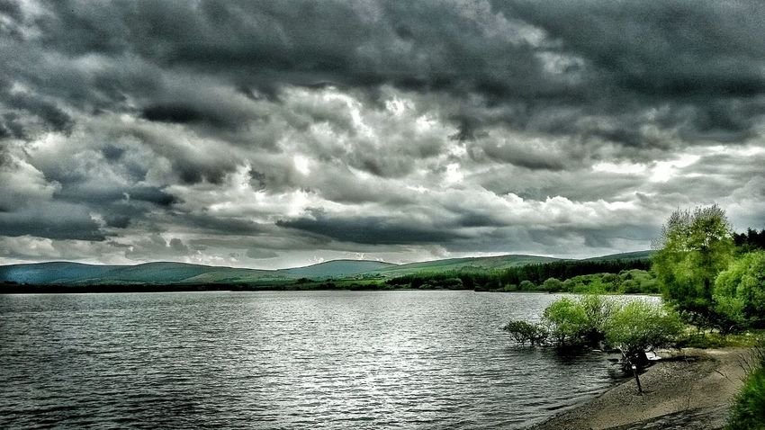 Relaxing Taking Photos Tree And Sky Waterscape Water Reflection Celbridge Lakes  Nature Photos Around You Landscape