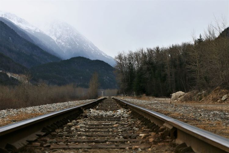 Mountain Railroad Track Rail Transportation Direction Track Transportation Tree Plant Nature The Way Forward Sky No People Diminishing Perspective Travel Beauty In Nature Landscape Day Environment Outdoors Mountain Range Skagway Alaska Train Tracks Historic Snowcapped Mountain Gold Rush Era