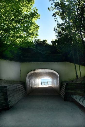 Holland Michigan Lake Michigan Tunnel Park Arch Architecture Built Structure Day Direction Entrance No People Outdoors State Park  Sunlight The Way Forward Tree Tunnel Wall