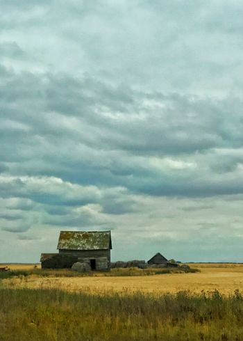 Barn on the prairie. Cloud - Sky Barn Rural Scene Sky Built Structure Architecture Building Exterior Field Landscape Grass Vertical Agriculture Farming