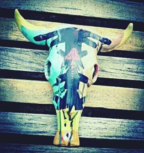 Ceramic Cow Skull Acrylic Paint