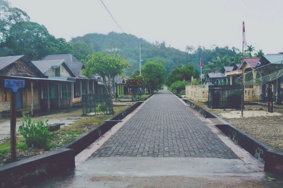 Landscape INDONESIA Village IPhoneography Traveling Beautiful Nature