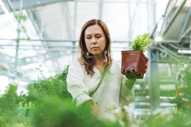 Portrait of woman with potted plants in greenhouse