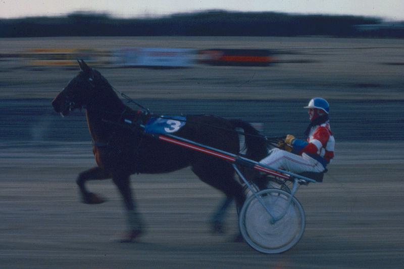 Blurred Motion Danmark Rømø Depth Of Field Domestic Animals Efforts Escapism Full Length Getting Away From It All Historic Horses Lifestyles Men One Animal Racetrack Side View Success Transportation Trotting Race Weekend Activities