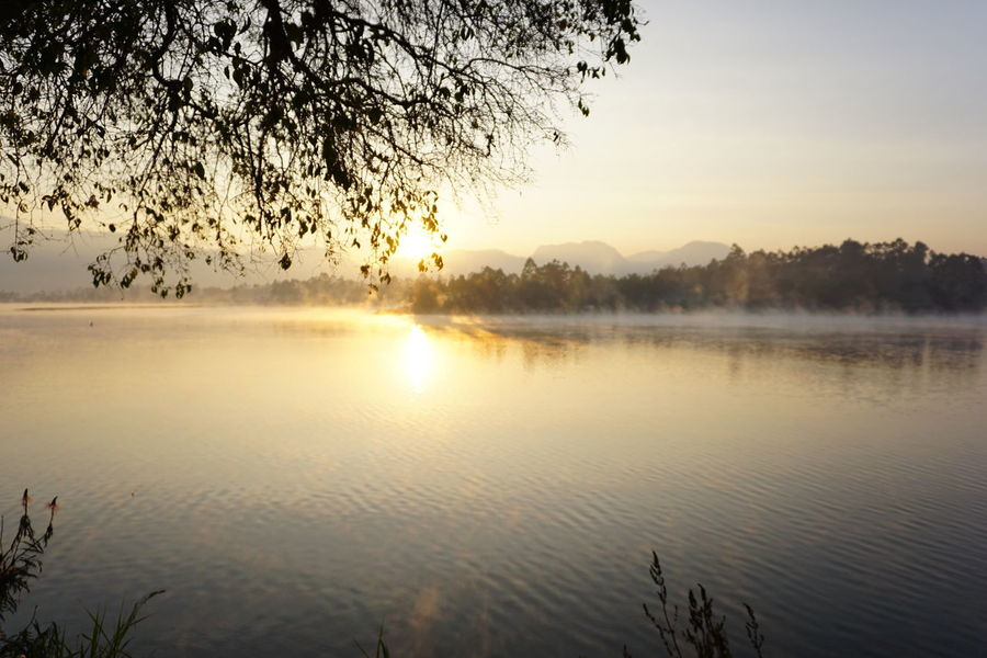 Fog Reflection Scenics Lake Tree Nature Outdoors Landscape Morning Beauty In Nature Sky Tranquility Water Sun Sunlight Dawn Paint The Town Yellow Mountain Vacations The Week On EyeEm Eyeem Photo Of The Week EyeEm Photo Of The Day in Bandung INDONESIA Been There. Done That.