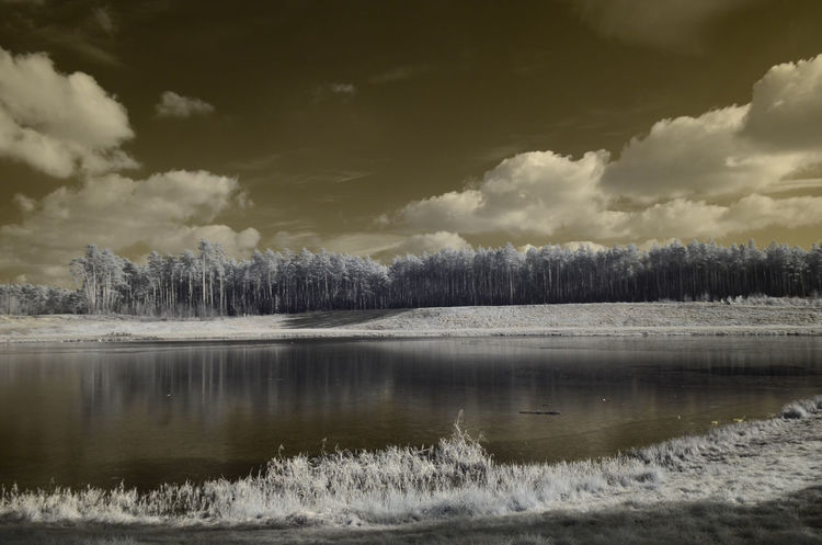 Infrared Beauty In Nature Cloud - Sky Day Landscape Nature No People Outdoors Scenics Sky Tranquil Scene Tranquility Tree
