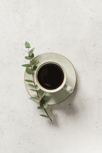 Cup Mug Refreshment Drink Food And Drink Directly Above Indoors  Coffee Cup Coffee High Angle View Coffee - Drink White Background No People Black Coffee Studio Shot Leaf Close-up Plant Part Still Life Freshness Crockery