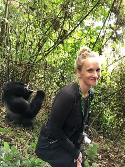 That's Me Good Day At The Office Mountain Gorilla Rwanda Adventure Buddies
