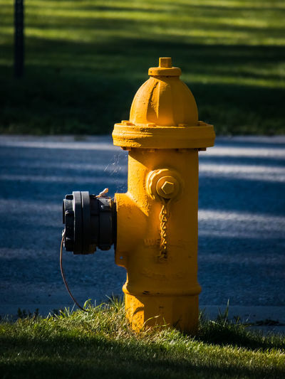 Close-up of fire hydrant on field