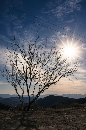 Santa Eulalia Bare Tree Beauty In Nature Cloud Cloud - Sky Horizon Over Land Idyllic Landscape Lens Flare Mountain Mountain Range Nature No People Non Urban Scene Non-urban Scene Outdoors Remote Scenics Sky Sun Sunbeam Sunlight Sunset Tranquil Scene Tranquility Travel Destinations