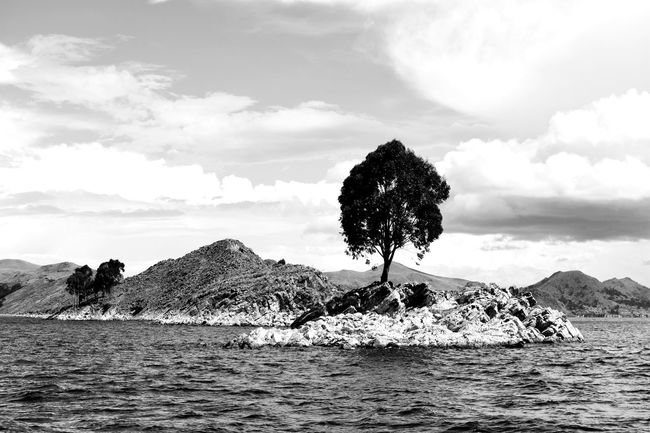 I felt so wild, not because of nature, but because far enough inside me I'm Landscape Island Tree Blackandwhite Lake Travel Monochrome Light And Shadow Water Lifestyles Wild Nature Boat Sun Sky Cloud - Sky Wave Lakeside Scenics