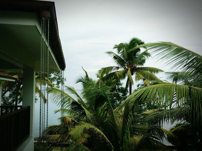Kerela monsoon First Eyeem Photo