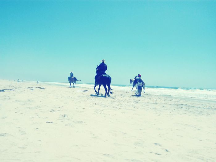 Horse back riding on the beach! Tijuana Mexican Border Beach Clear Sky Sand Riding Arid Climate Scenics Tranquil Scene Idyllic