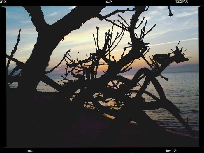 Fireisland Sunset Naturelovers The Illusionist - 2014 EyeEm Awards