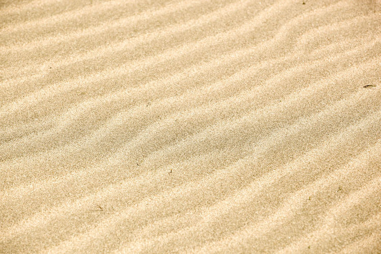 Sand Background Texture Backgrounds Land Full Frame Pattern Sand No People Nature Textured  High Angle View Brown Wave Pattern Day Tranquility Beach Outdoors Beige Natural Pattern Tranquil Scene Beauty In Nature Landscape Natural Condition